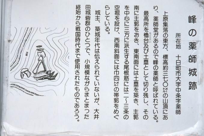 峰の薬師城 古城址狂が行く!